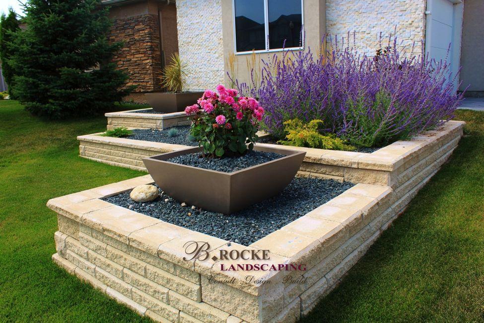 top 10 accent shrubs b rocke landscaping