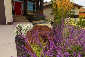 Bees | Flowers | B. Rocke Landscaping | Winnipeg, Manitoba