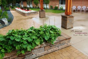 Vegetables | Planter | B. Rocke Landscaping | Winnipeg, Manitoba